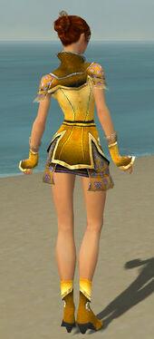 Elementalist Shing Jea Armor F dyed back