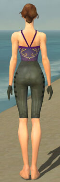 Mesmer Rogue Armor F gray arms legs back