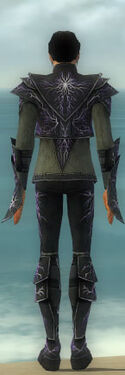 Elementalist Elite Stormforged Armor M gray back