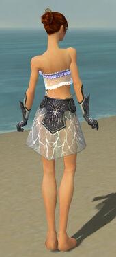 Elementalist Stormforged Armor F gray arms legs back