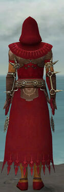 Dervish Sunspear Armor M dyed back