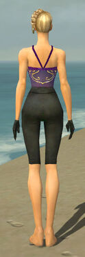 Mesmer Ascalon Armor F gray arms legs back