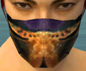 Assassin Elite Exotic Armor M dyed head front