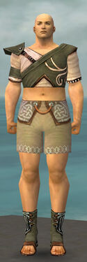 Monk Shing Jea Armor M gray chest feet front