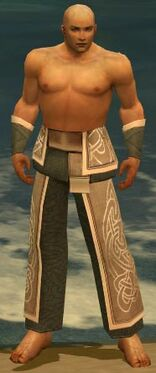 Monk Tyrian Armor M gray arms legs front
