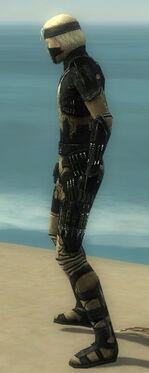 Assassin Kurzick Armor M dyed side