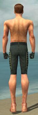 Mesmer Rogue Armor M gray arms legs back