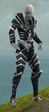 Necromancer Elite Cultist Armor M dyed front
