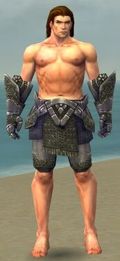 Warrior Platemail Armor M gray arms legs front