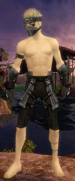 Assassin Luxon Armor M gray arms legs front