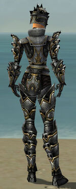 Warrior Obsidian Armor F dyed back