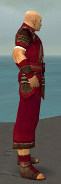Monk Censor Armor M dyed side