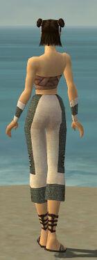Monk Elite Saintly Armor F gray arms legs back