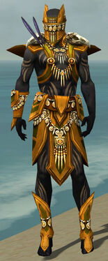 Ritualist Elite Kurzick Armor M dyed front