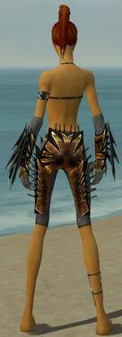 Assassin Elite Exotic Armor F gray arms legs back