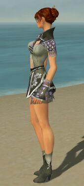 Elementalist Shing Jea Armor F gray side