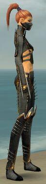 Assassin Exotic Armor F gray side alternate
