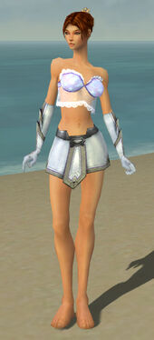Elementalist Ascalon Armor F gray arms legs front