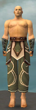 Monk Shing Jea Armor M gray arms legs front