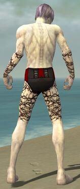 Necromancer Elite Scar Pattern Armor M gray arms legs back