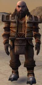 Ogden Stonehealer Armor Brotherhood Front