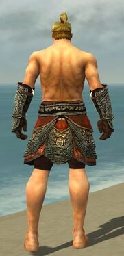 Warrior Elite Canthan Armor M gray arms legs back