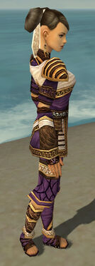 Monk Elite Canthan Armor F dyed side