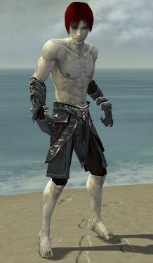 Necromancer Asuran Armor M gray arms legs front