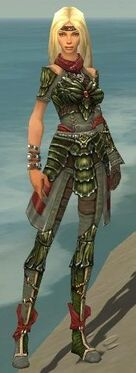 Ranger Elite Luxon Armor F gray front