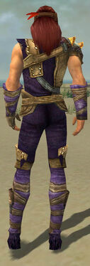Ranger Tyrian Armor M dyed back