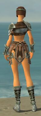 Warrior Gladiator Armor F gray back