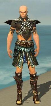 Ritualist Deldrimor Armor M gray front