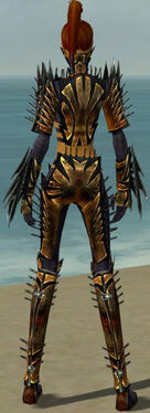 Assassin Elite Exotic Armor F dyed back