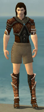 Ranger Vabbian Armor M gray chest feet front