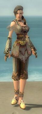 Monk Deldrimor Armor F gray front