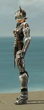 Warrior Elite Sunspear Armor F dyed side