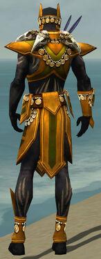 Ritualist Elite Kurzick Armor M dyed back