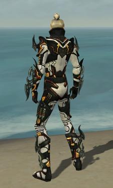Assassin Elite Kurzick Armor M dyed back