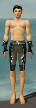 Elementalist Shing Jea Armor M gray arms legs front