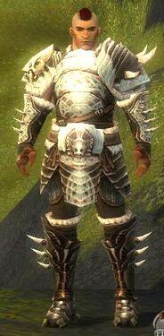 Warrior Norn Armor M nohelmet