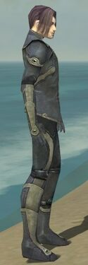 Elementalist Ascalon Armor M gray side