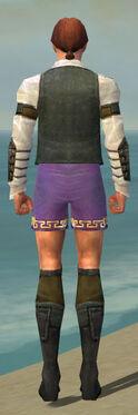Mesmer Ascalon Armor M gray chest feet back