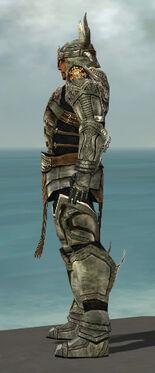 Warrior Elite Sunspear Armor M gray side