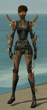 Assassin Elite Imperial Armor F dyed front