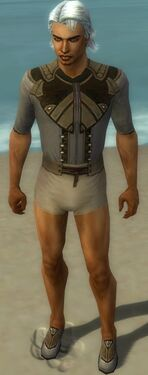 Dervish Asuran Armor M gray chest feet front