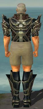 Warrior Elite Kurzick Armor M gray chest feet back