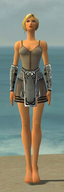 Warrior Istani Armor F gray arms legs front