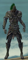 Necromancer Elite Necrotic Armor M gray front