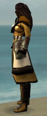 Ranger Norn Armor F dyed side