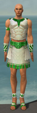 Paragon Istani Armor M dyed front